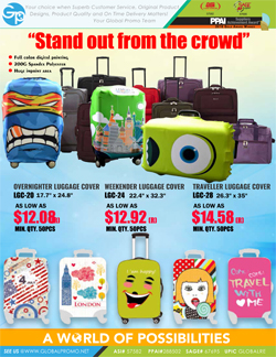 Luggage Flyer